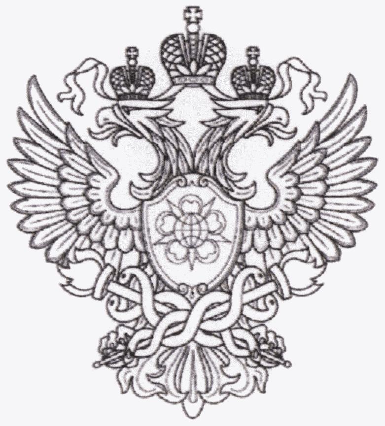 община символика россии картинки для раскрашивания очень преданные животные